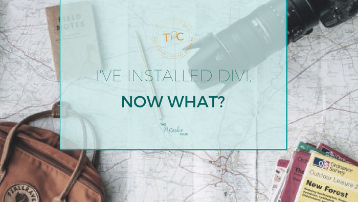 I've installed divi, now what?
